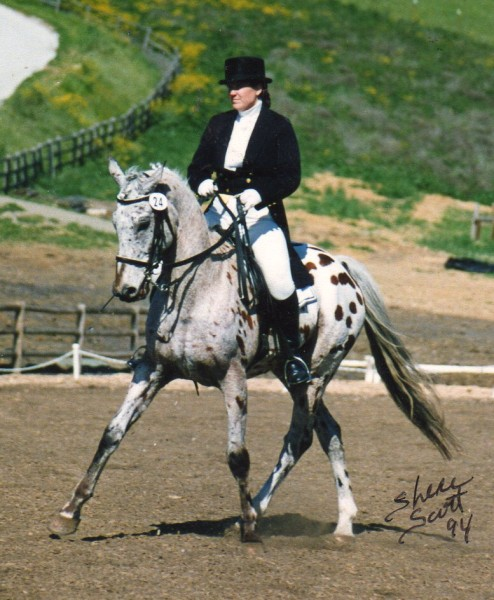 Behind the Bit: Pet names for our horses