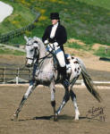 Appaloosa sporthorse Bimbo and his owner, rider and trainer Shareen Percell